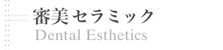 審美セラミック | Dental Esthetics